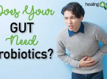 does-your-gut-need-probiotics