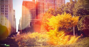 Reflect the fall season within your wellness business.